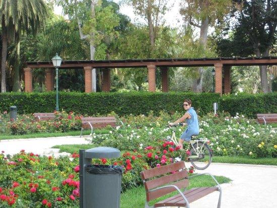 Royal Gardens (Jardines del Real) : giardini del real