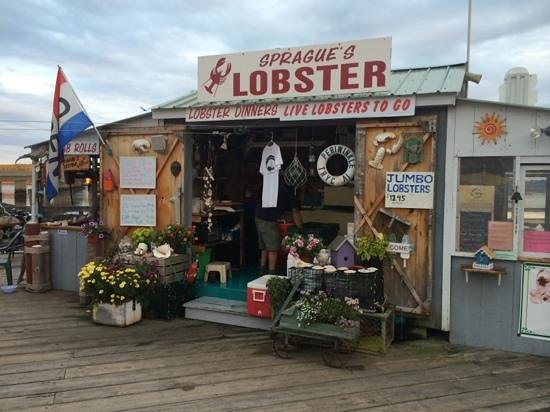 Sprague's Lobster : Who needs Red's?