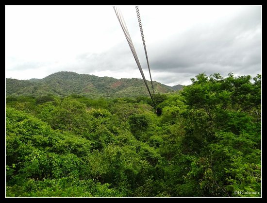 The Congo Trail Canopy Tour: One of the runs