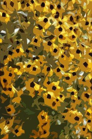 Denver Botanic Gardens: daisies