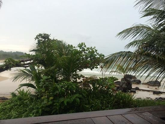 Punta Lava Beach Bar and Grill: 10 second walk from the restaurant