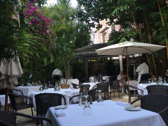Cafe Matisse : Courtyard