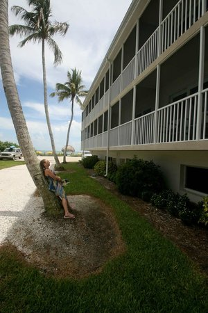 Sunset Beach Inn: Daughter Dana leaning on a palm tree with the ocean in the background