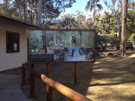 Thunderbird Park: Treetop Adventure