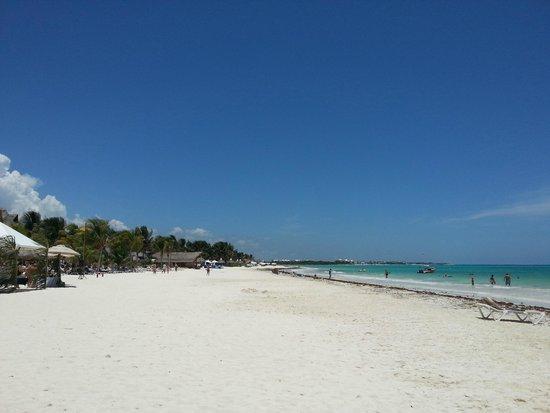 Catalonia Playa Maroma : Spiaggia