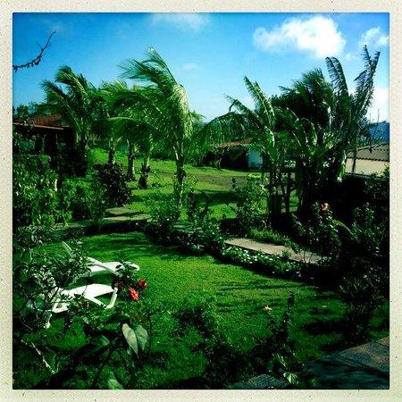 Mana Nui Inn : Veiw of general area