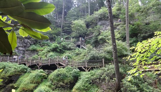 Bushkill Falls : Bridges and Stairways up from lower falls