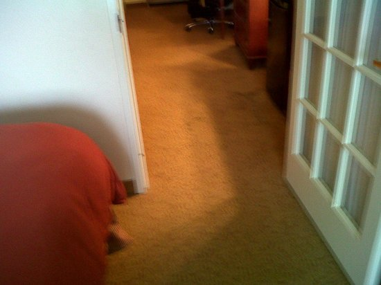 Country Inn & Suites By Carlson, Chattanooga at Hamilton Place Mall: Carpet stains entering the bedroom