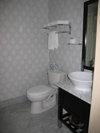 Hotel Shattuck Plaza : Bathroom