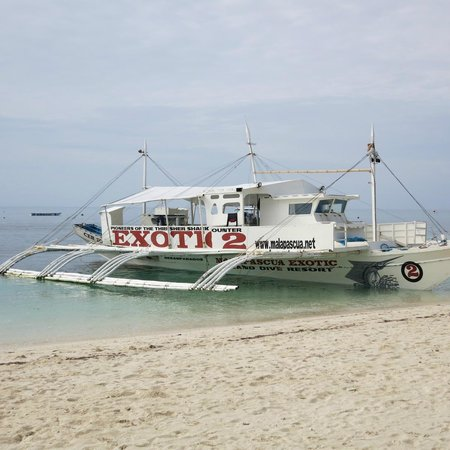 Malapascua Exotic Island Dive & Beach Resort: One of many Exotic's flotilla of boats