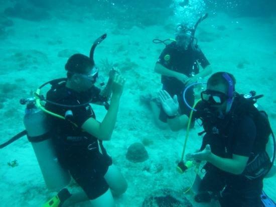 Florida Keys Dive Center: Open water