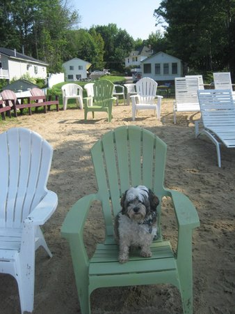 Lake Shore Motel & Cottages: Lots of nice Adirondack chairs for relaxing at the beach