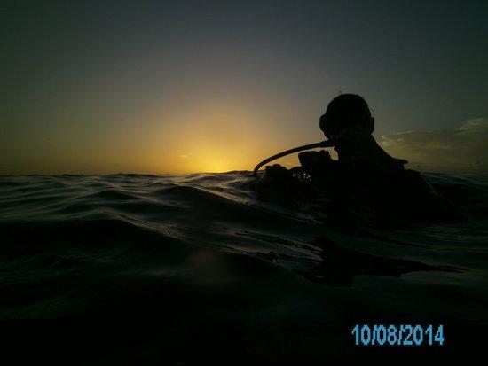 Conch Republic Divers: Night Dive