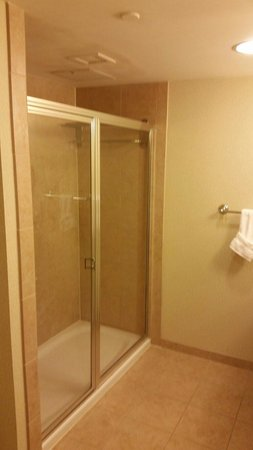 Hilton Garden Inn Lake Buena Vista/Orlando: Shower of King Evolution Suite.