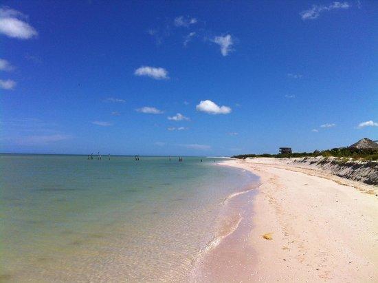 Casa de Celeste Vida : Vue de la plage!