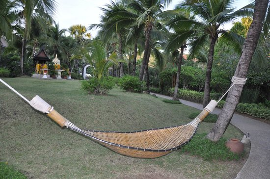 Bandara Resort & Spa: a place to have a dogsleep
