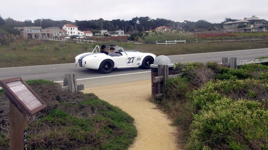 Walking Path - Asilomar Conference Grounds to State Beach (Concourse d'Elegance 2014) Pacific Gr