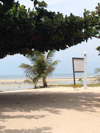 V-View Beach Resort: Gorgeous view every morning