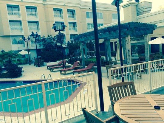 Sheraton Atlanta Perimeter North: Pool area very cute