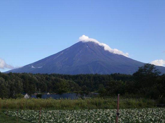 Regina Resorts Fuji Suites&Spa: 天気が良くても、部屋からは富士山は見えません。
