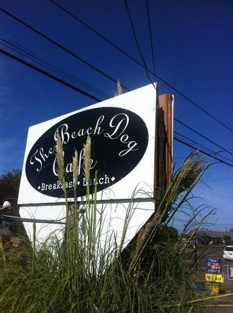 Beach Dog Cafe Lincoln City Restaurant Reviews Phone
