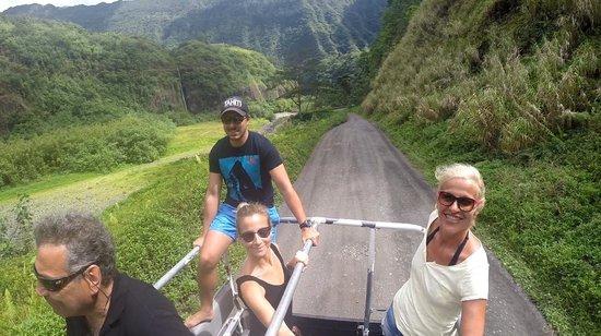 Tahiti Safari Expedition  - Day Tours: sur la piste