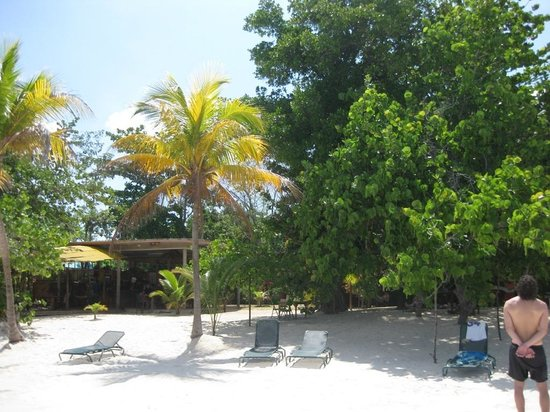 Jah B's Doll House Cottages : Free beach
