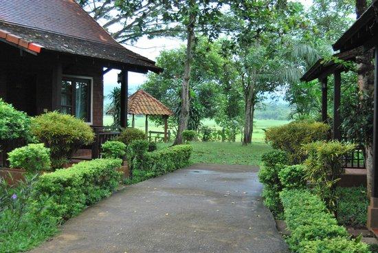 Golden Pine Resort: bungalow