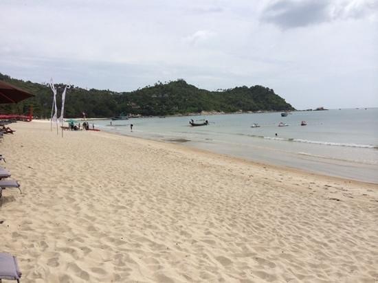 Buri Rasa Koh Phangan: the beach