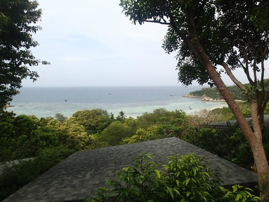 Chintakiri Resort: View from room