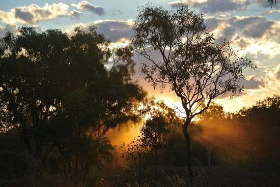 Mt Hart Homestead : Sunset