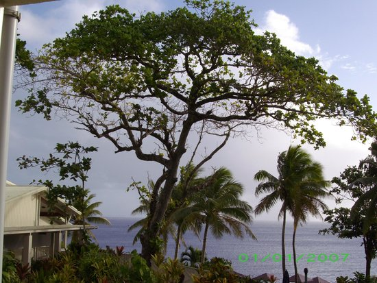 Scenic Matavai Resort Niue: another view from our room