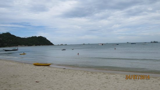 Buri Rasa Koh Phangan : אזור החוף
