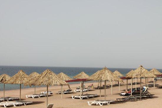 Aqaba Gulf Hotel: платный пляж