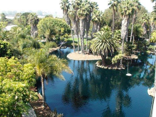 Paradise Point Resort & Spa: Resort