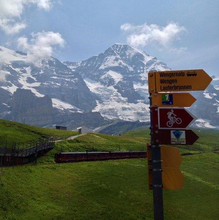 Kleine Scheidegg: 鮮やか緑に赤い登山電車が映える