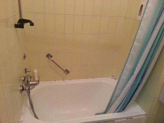 Come fare un controsoffitto per un bagno sul design