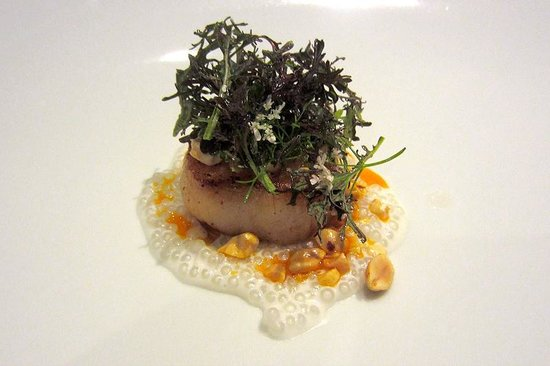 Providence: 9th Anniversary Tasting Menu 2nd course: Live New Bedford Scallop