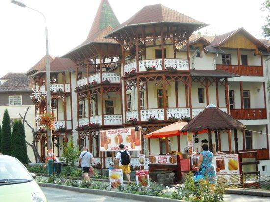 Sovata, Rumania: Hotel with turrets