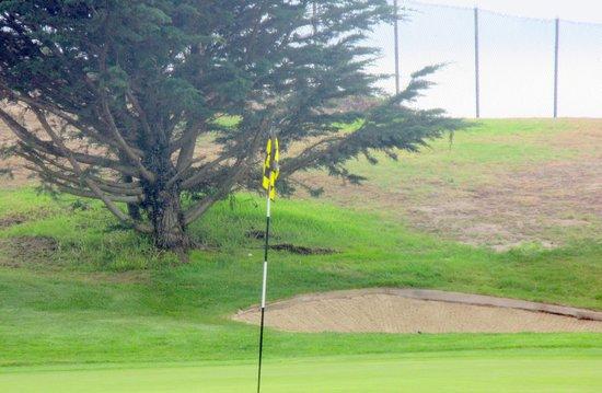 Pacific Grove Municipal Golf Course, Pacific Grove, Ca