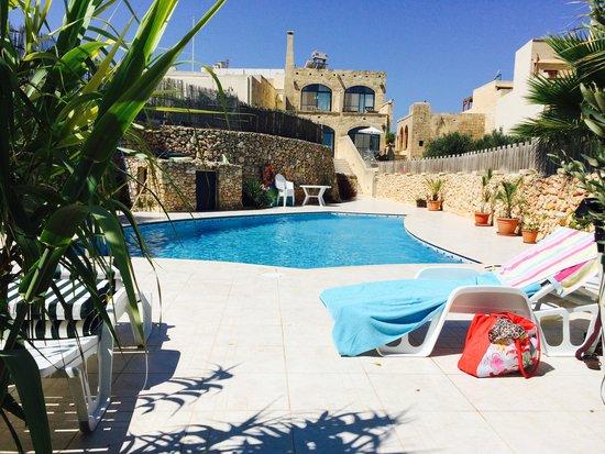 Ellie Boo Bed & Breakfast: The pool