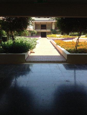 Barut Arum : 4th floor gardens