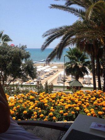 Barut Arum : snack bar view