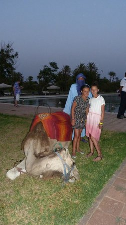 Pullman Marrakech Palmeraie Resort and Spa : soirée marocaine