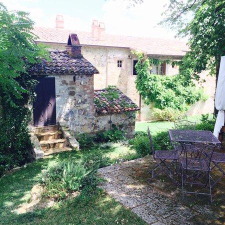 Agriturismo Casa Fabbrini: Behind The swimmingpool