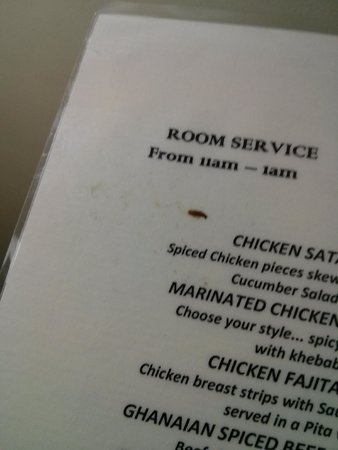 Alisa Hotels North Ridge: A food smudge on the room service menu in the room