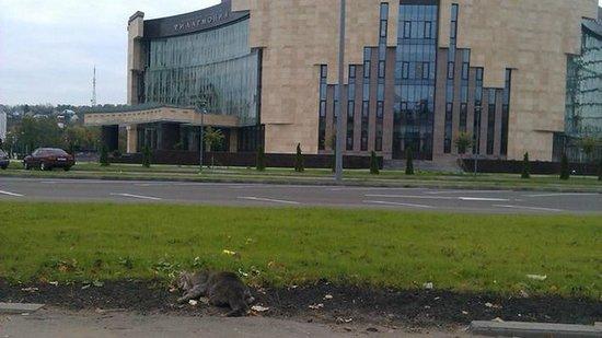 Penza Regional Philharmonic Hall