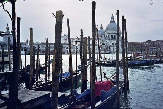 Basilica di Santa Maria della Salute: Santa Maria della Salute - Venice