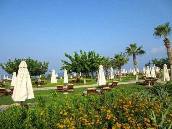 Elysium Hotel : Beach