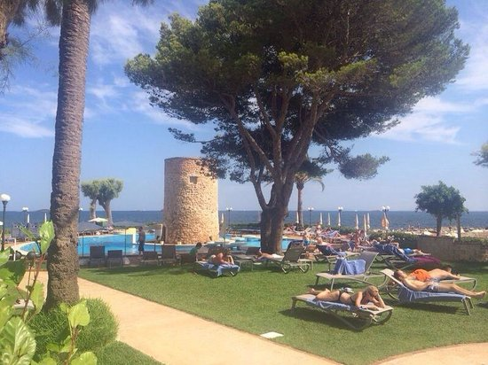Hotel Torre del Mar: Pool and gardens